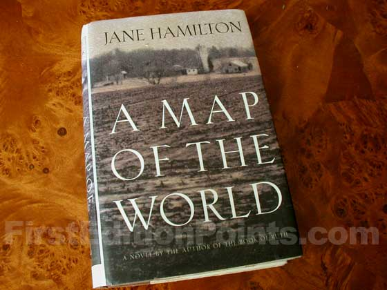 Picture of the 1994 first edition dust jacket for A Map of the World.