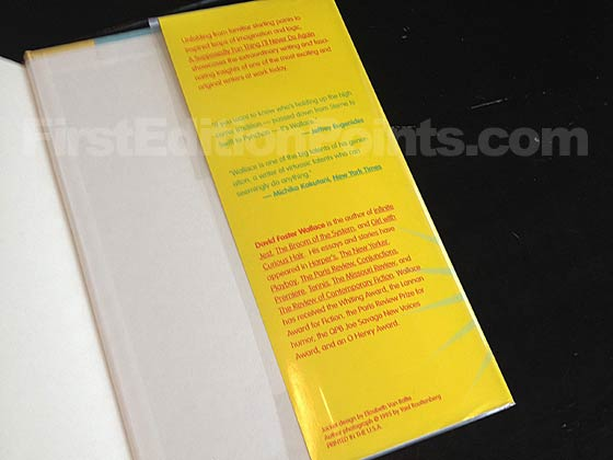 Picture of the back dust jacket flap for the first edition of A Supposedly Fun Thing