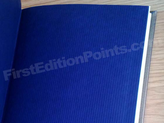 The end papers of the first edition of A Hologram For The King are textured navy blue