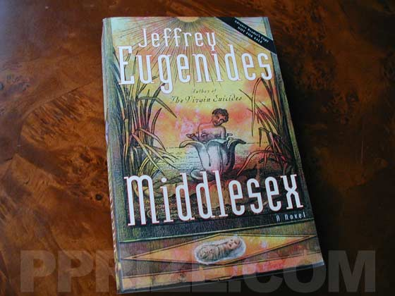 This is the front cover of the Advance Reading Copy of Middlesex.  It is similar to the