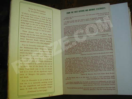 The front flap of later issue dust jackets has a fold-out flap with reviews.  The