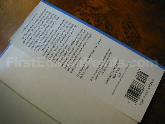 Picture of the back dust jacket flap for the first edition of Sometimes You See It
