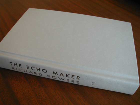Identification picture of The Echo Maker.