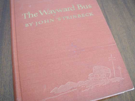 Identification picture of The Wayward Bus.