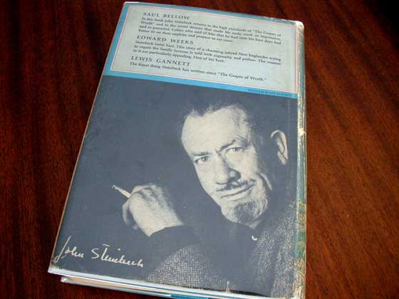 Picture of the back dust jacket for the first edition of The Winter of Our Disc