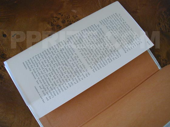 This is the front dust jacket flap for the first trade edition of The Optimist's