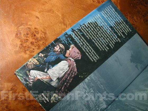 Picture of dust jacket where original £13.95 price is found for The Pillars of the